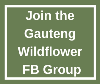 wildflower facebook group
